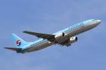 テクノジャンボさんが、成田国際空港で撮影した大韓航空 737-9B5の航空フォト(写真)