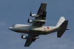 撮り撮り人さんが、岩国空港で撮影した海上自衛隊の航空フォト(写真)