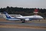鷹輝@SKY TEAMさんが、成田国際空港で撮影した全日空 787-8 Dreamlinerの航空フォト(写真)