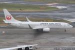 キイロイトリ1005fさんが、羽田空港で撮影した日本航空 737-846の航空フォト(写真)