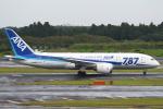 セブンさんが、成田国際空港で撮影した全日空 787-8 Dreamlinerの航空フォト(写真)