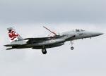 voyagerさんが、那覇空港で撮影した航空自衛隊 F-15J Eagleの航空フォト(飛行機 写真・画像)