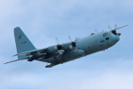 TK0528さんが、岐阜基地で撮影した航空自衛隊 C-130H Herculesの航空フォト(写真)