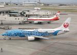 voyagerさんが、那覇空港で撮影した日本トランスオーシャン航空 737-4Q3の航空フォト(飛行機 写真・画像)