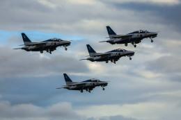 peanutsさんが、岐阜基地で撮影した航空自衛隊 T-4の航空フォト(写真)