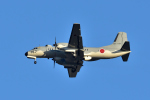 NFファンさんが、厚木飛行場で撮影した航空自衛隊 YS-11A-402EBの航空フォト(写真)