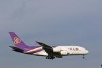 OS52さんが、成田国際空港で撮影したタイ国際航空 A380-841の航空フォト(写真)