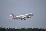 motokimuさんが、成田国際空港で撮影した日本航空 787-8 Dreamlinerの航空フォト(写真)