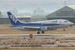 コギモニさんが、小松空港で撮影したANAウイングス 737-5L9の航空フォト(写真)