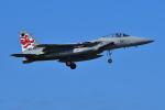 はるかのパパさんが、那覇空港で撮影した航空自衛隊 F-15J Eagleの航空フォト(写真)