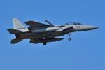 はるかのパパさんが、那覇空港で撮影した航空自衛隊 F-15DJ Eagleの航空フォト(写真)