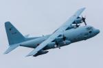 みぐさんが、岐阜基地で撮影した航空自衛隊 C-130H Herculesの航空フォト(写真)