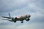 Ruuuuさんが、成田国際空港で撮影した全日空 777-381/ERの航空フォト(写真)