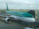ITM44さんが、アムステルダム・スキポール国際空港で撮影したエア・リンガス A320-214の航空フォト(写真)