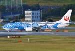 あしゅーさんが、福岡空港で撮影した日本トランスオーシャン航空 737-8Q3の航空フォト(写真)