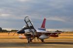 ばとさんが、岐阜基地で撮影した航空自衛隊 F-2Bの航空フォト(写真)