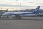 AntonioKさんが、羽田空港で撮影した全日空 A320-211の航空フォト(写真)