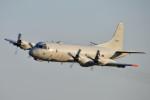 Yamaro_nikkorさんが、茨城空港で撮影した海上自衛隊 P-3Cの航空フォト(写真)