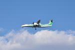 you55さんが、伊丹空港で撮影したANAウイングス DHC-8-402Q Dash 8の航空フォト(写真)