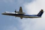 A-Chanさんが、成田国際空港で撮影したエアーニッポンネットワーク DHC-8-402Q Dash 8の航空フォト(写真)