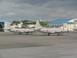 バンチャンさんが、那覇空港で撮影した海上自衛隊 P-3Cの航空フォト(写真)