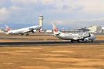 hidetsuguさんが、新千歳空港で撮影した日本航空 737-846の航空フォト(写真)