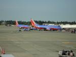 バンチャンさんが、シアトル タコマ国際空港で撮影したサウスウェスト航空 737-7H4の航空フォト(写真)