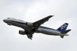 A-Chanさんが、関西国際空港で撮影した全日空 A320-211の航空フォト(写真)