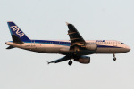 A-Chanさんが、羽田空港で撮影した全日空 A320-211の航空フォト(写真)
