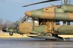 もぐ3さんが、新潟空港で撮影した陸上自衛隊 UH-60JAの航空フォト(写真)