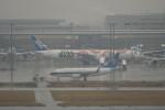 krozさんが、羽田空港で撮影した中国南方航空 737-71Bの航空フォト(写真)