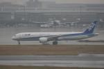 krozさんが、羽田空港で撮影した全日空 787-9の航空フォト(写真)