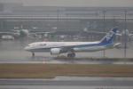 krozさんが、羽田空港で撮影した全日空 787-8 Dreamlinerの航空フォト(写真)