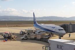 KKiSMさんが、関西国際空港で撮影した全日空 737-881の航空フォト(飛行機 写真・画像)