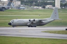 kumagorouさんが、嘉手納飛行場で撮影したタイ王国空軍 C-130H-30の航空フォト(写真)