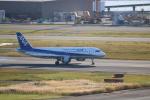Inamiさんが、羽田空港で撮影した全日空 A320-211の航空フォト(写真)