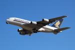 OMAさんが、成田国際空港で撮影したシンガポール航空 A380-841の航空フォト(写真)