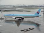 バンチャンさんが、羽田空港で撮影した大韓航空 777-3B5の航空フォト(写真)