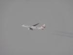 バンチャンさんが、近畿上空で撮影した日本航空 767-346/ERの航空フォト(写真)