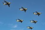 Ariesさんが、入間飛行場で撮影した航空自衛隊 C-1の航空フォト(写真)