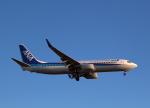 STAR TEAMさんが、小松空港で撮影した全日空 737-881の航空フォト(写真)