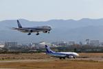 わかすぎさんが、小松空港で撮影した全日空 777-381の航空フォト(写真)