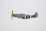 チャッピー・シミズさんが、ネリス空軍基地で撮影したTexas Flying Legends Museum P-51D Mustangの航空フォト(写真)