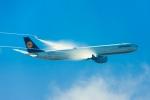 たーぼーさんが、羽田空港で撮影したルフトハンザドイツ航空 A340-642の航空フォト(写真)