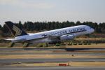 ☆ライダーさんが、成田国際空港で撮影したシンガポール航空 A380-841の航空フォト(写真)