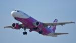オキシドールさんが、関西国際空港で撮影したピーチ A320-214の航空フォト(写真)