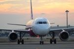 つっさんさんが、関西国際空港で撮影したピーチ A320-214の航空フォト(写真)