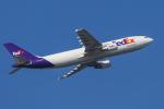 mameshibaさんが、成田国際空港で撮影したフェデックス・エクスプレス A300B4-622R(F)の航空フォト(写真)