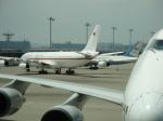 バンチャンさんが、羽田空港で撮影したドイツ空軍 A340-313Xの航空フォト(写真)