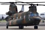 筑波のヘリ撮りさんが、下総航空基地で撮影した陸上自衛隊 CH-47JAの航空フォト(写真)